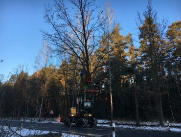 Baumschere / Fällgreifer HBS 350 für Baggeranbau